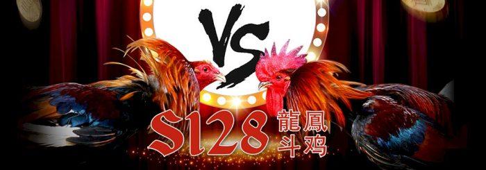 Login S128 Judi Sabung Ayam Daftarsabungs128